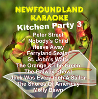 Newfoundland Karaoke Kitchen Party 3